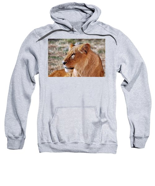 Lion Around Sweatshirt