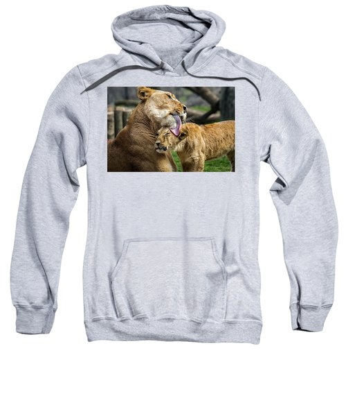 Lion Mother Licking Her Cub Sweatshirt