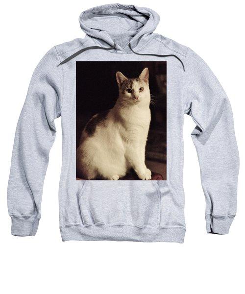 Lisa-lisa Posing Sweatshirt