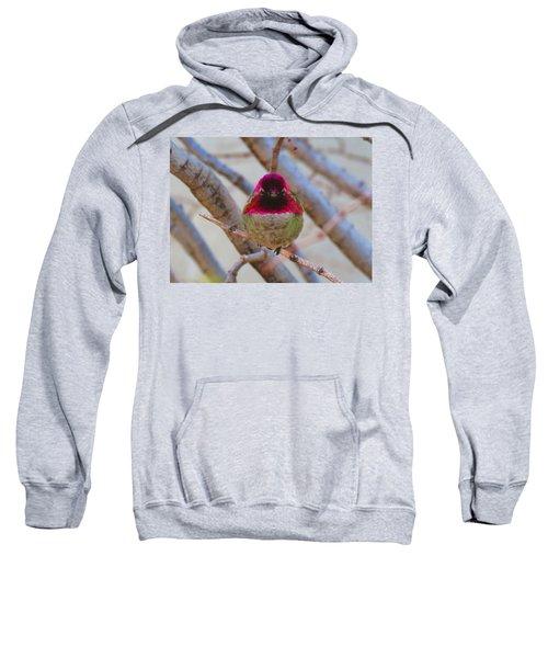 Little Jewel All Aglow Sweatshirt