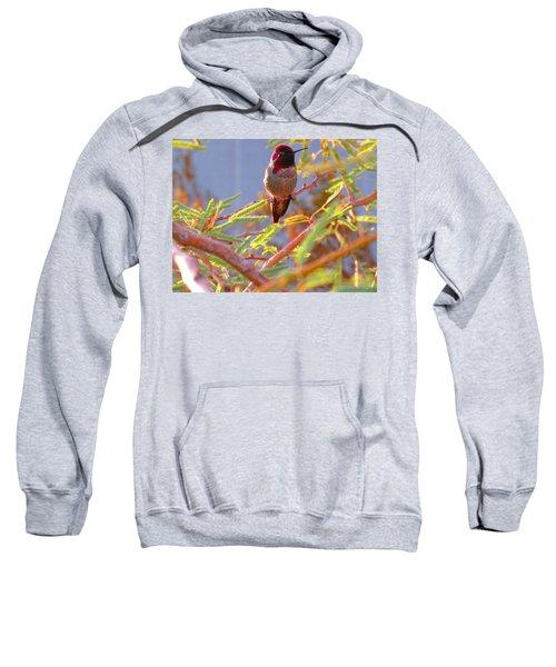 Little Jewel With Wings Sweatshirt