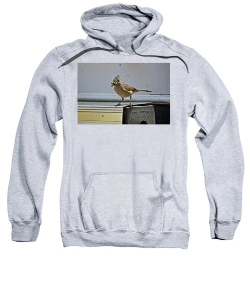 Little Mother Sweatshirt