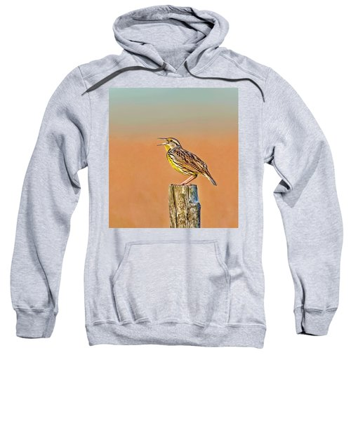 Little Songbird Sweatshirt