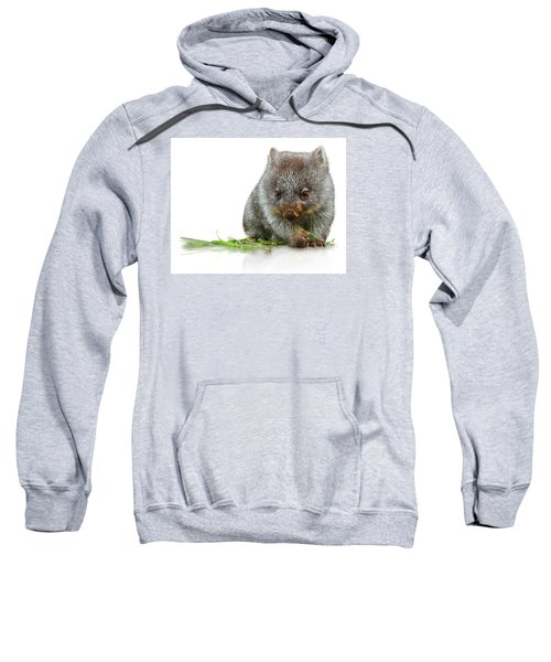 Little Wombat Sweatshirt
