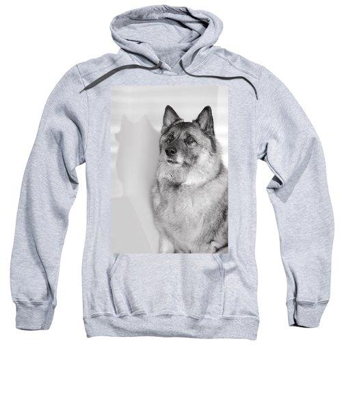 Loki Bw Sweatshirt
