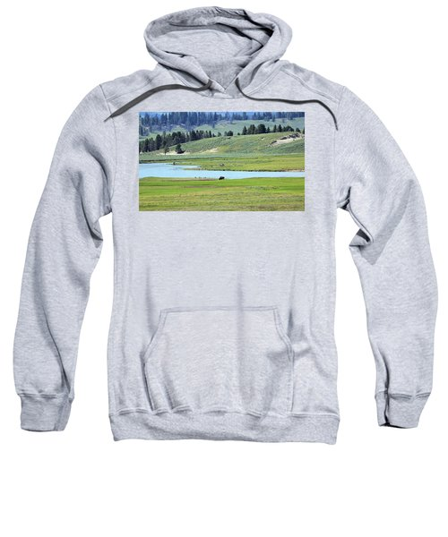 Lone Bison Out On The Prairie Sweatshirt