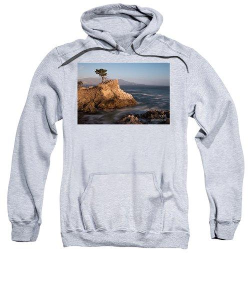 lone Cypress Tree Sweatshirt