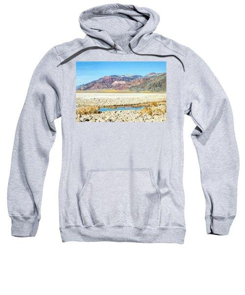 Lone Pool Sweatshirt