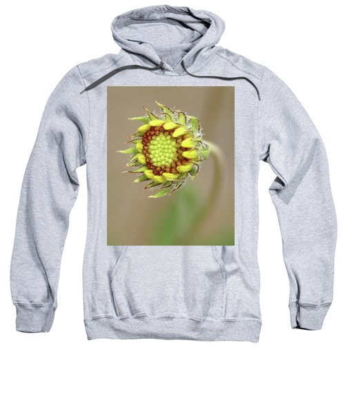 Long Stemmed Beauty Sweatshirt