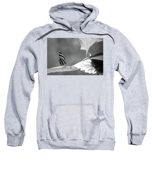 Looking Ahead Sweatshirt