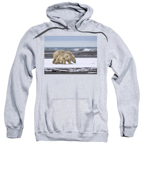 Looking Back In The Arctic Sweatshirt