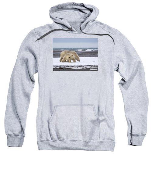 Looking Back In The Arctic Sweatshirt