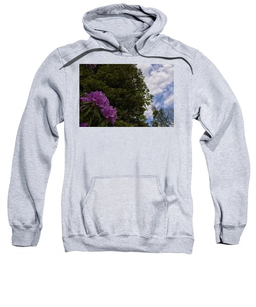 Looking To The Sky Sweatshirt