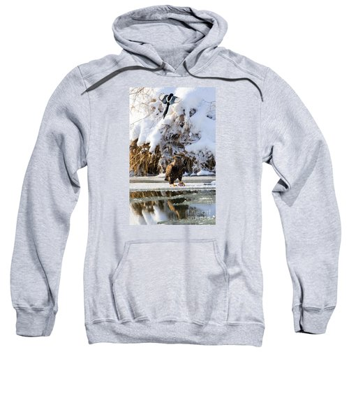 Lookout Above Sweatshirt by Mike Dawson