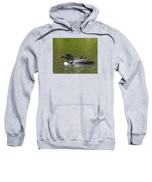 Loon Taxi Sweatshirt