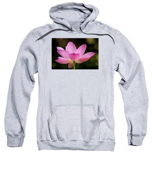 Lotus At The National Zoo Sweatshirt