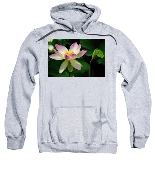 Lotus Lily In Its Final Days Sweatshirt
