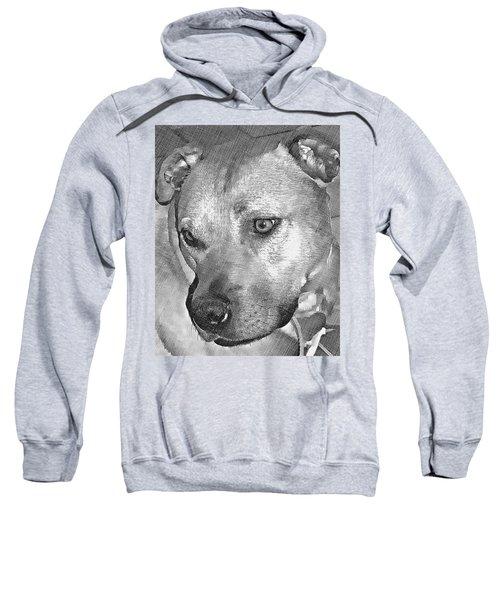 Lovely Dog Sweatshirt