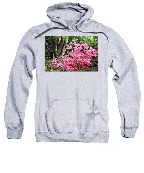 Lovely Pink Azalea Sweatshirt