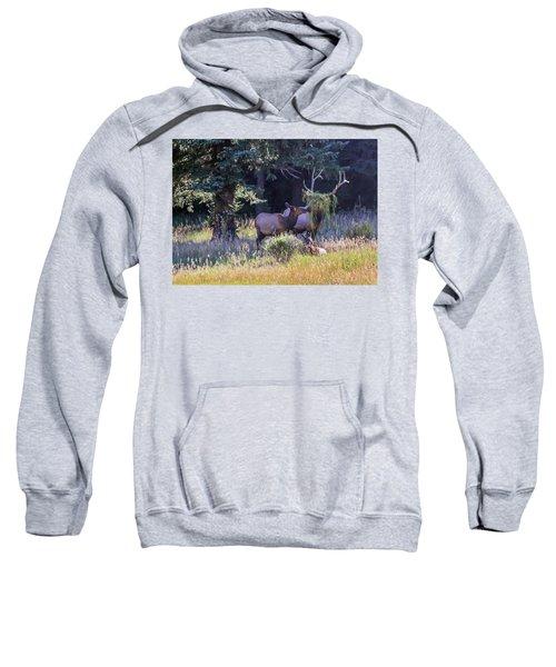 Loving The New Hairdo Sweatshirt