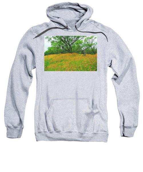 Lush Coreopsis Sweatshirt
