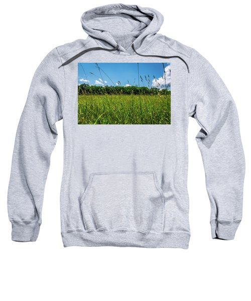 Lying In The Grass Sweatshirt