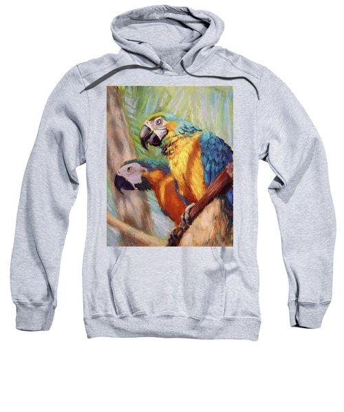 Macaws In The Sunshine Sweatshirt