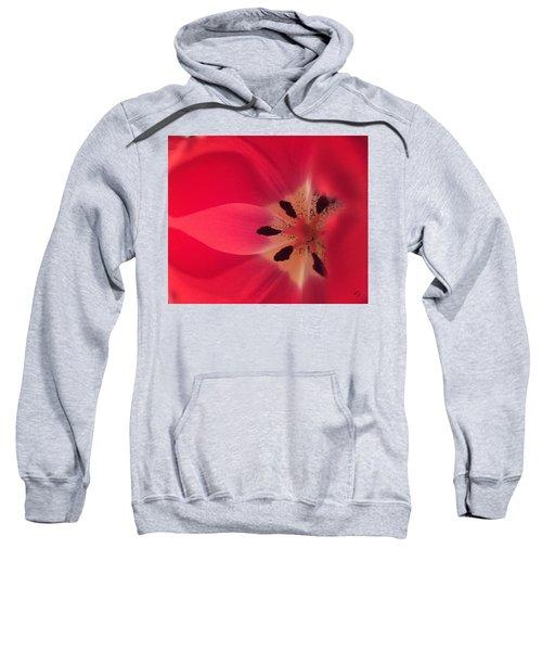 Macro Beauty Tulip Sweatshirt