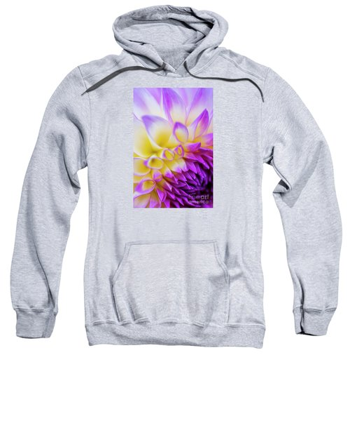 Macro Dahlia Sweatshirt