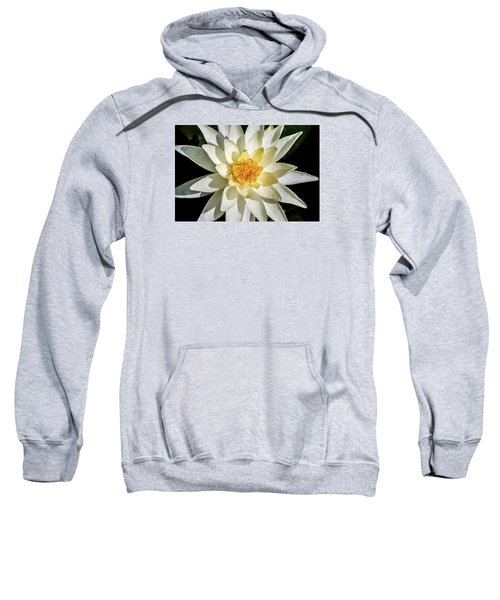 Macro Water Lily Sweatshirt