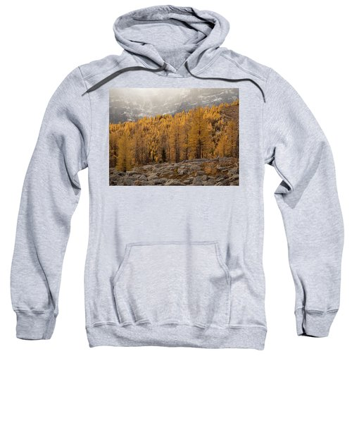 Magnificent Fall Sweatshirt