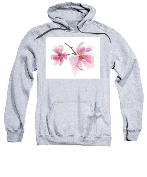 Magnolia Is The Harbinger Of Spring. Sweatshirt
