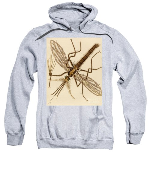 Magnified Mosquito Sweatshirt