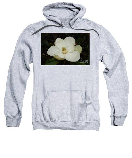 Magnolia Blossom 5 Sweatshirt