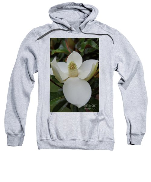 Magnolia Blossom 6 Sweatshirt
