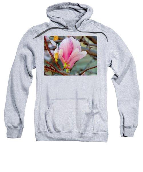 Magnolia Blossoms Sweatshirt
