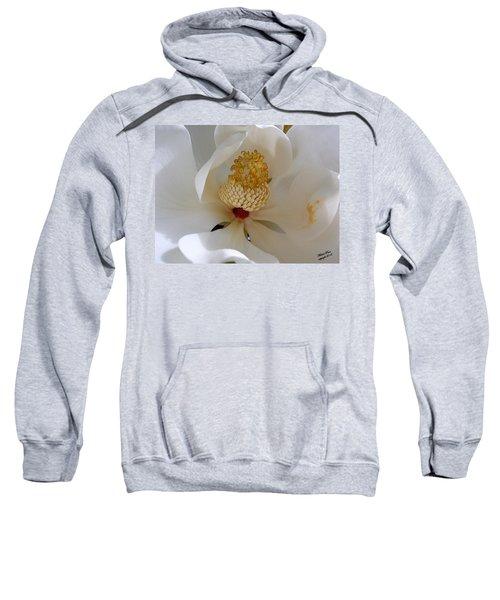 Magnolia Happiness Sweatshirt