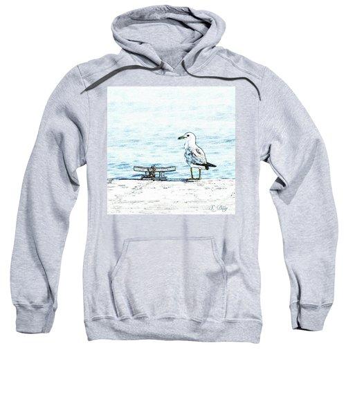 Maine Seagull Sweatshirt