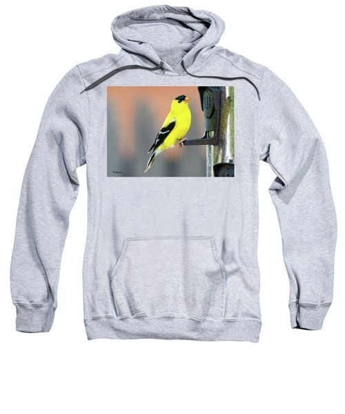 Male American Goldfinch Sweatshirt