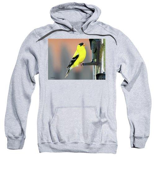 Male American Goldfinch Sweatshirt