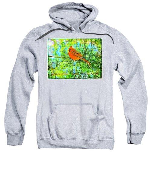 Male Cardinal In Juniper Tree Sweatshirt