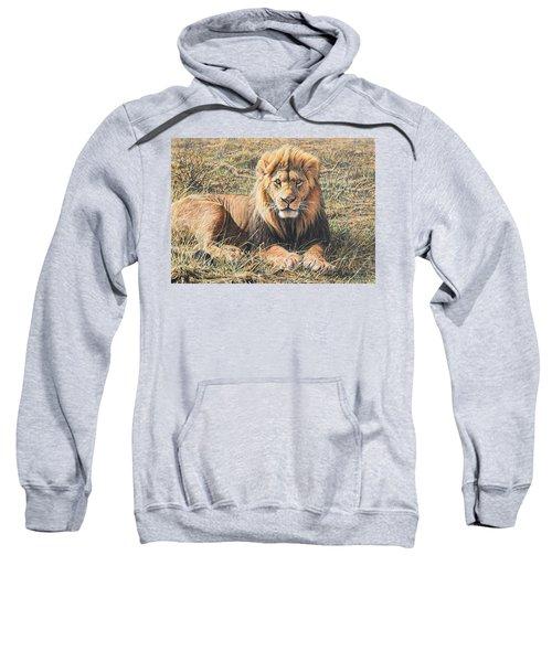 Male Lion Portrait Sweatshirt