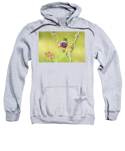 Male Painted Bunting #2 Sweatshirt by Tom and Pat Cory