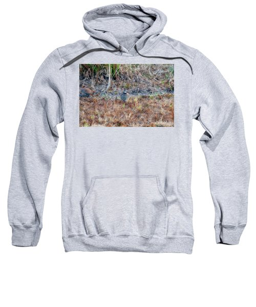Male Quail In Field Sweatshirt