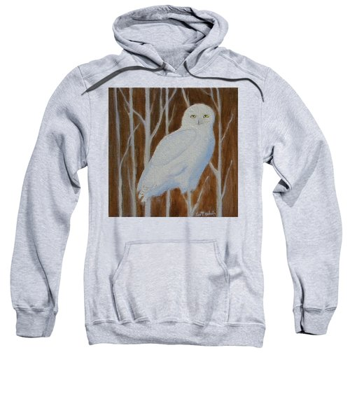 Male Snowy Owl Portrait Sweatshirt