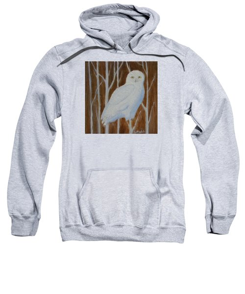 Male Snowy Owl Portrait Sweatshirt