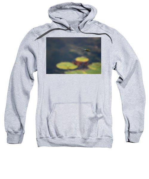 Malibu Blue Dragonfly Flying Over Lotus Pond Sweatshirt