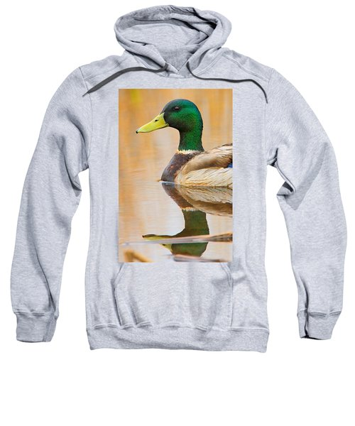 Mallard Mirror Sweatshirt