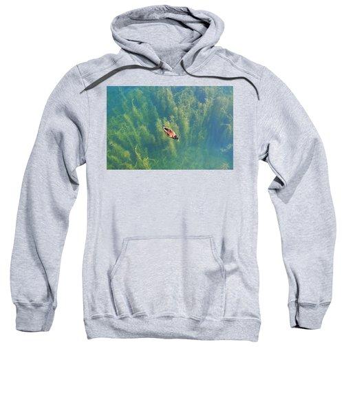 Mallard Over Seaweed Sweatshirt