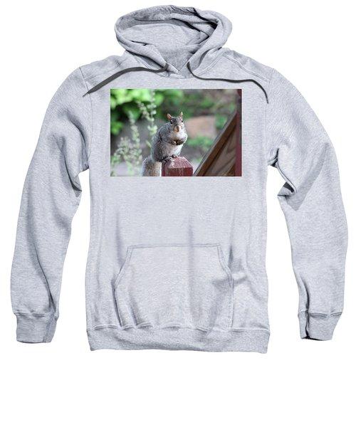 Mama Squirrel Sweatshirt